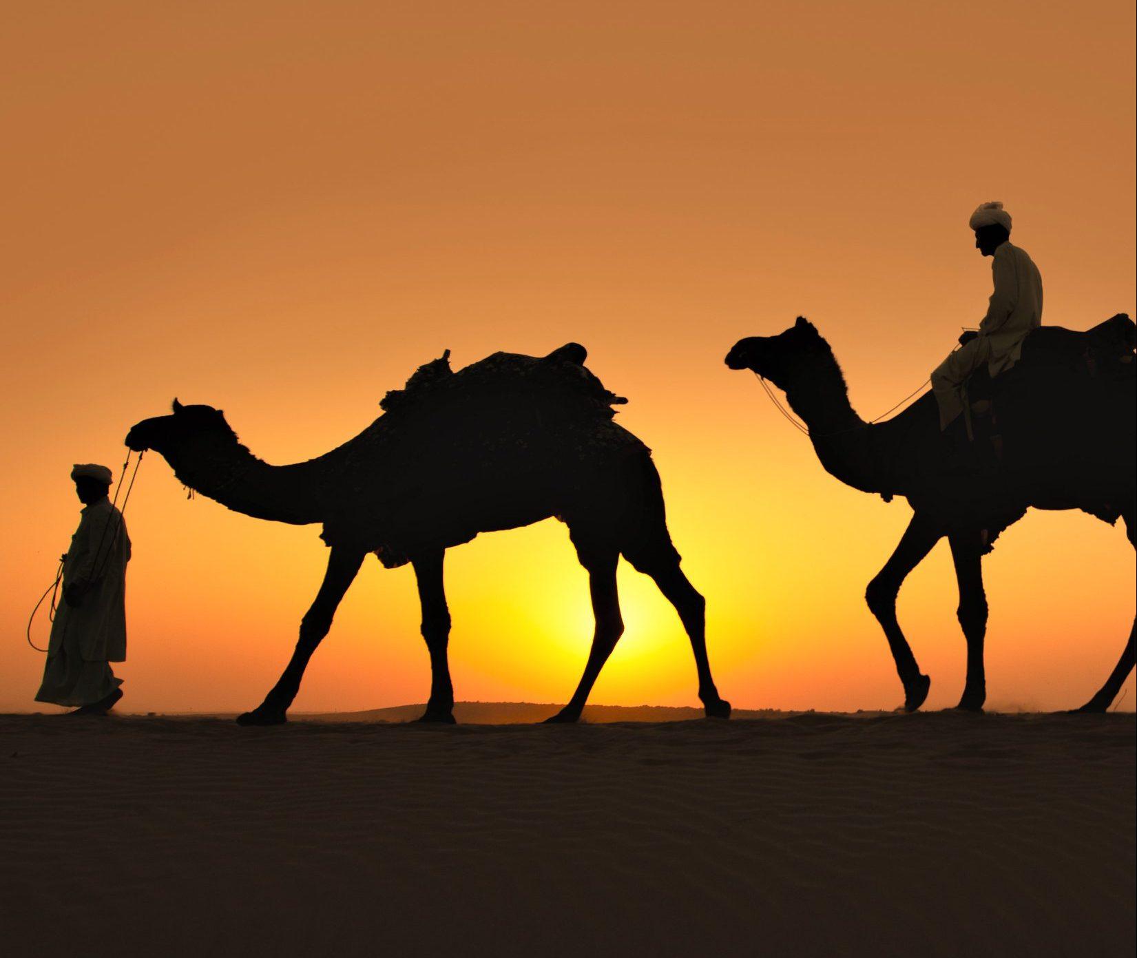 Sahara Desert Photo Tour 3