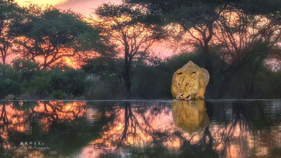 Kenya Family Safari Tour 7
