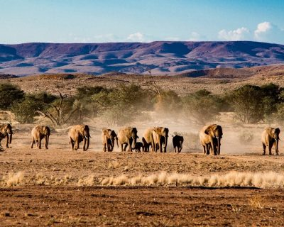 Namibia Travel Guide 5