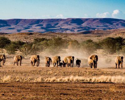 Swakopmund in Namibia 6