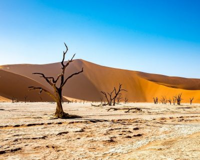 Sossusvlei - One of the Most Fantastic Landscapes in Namibia 5