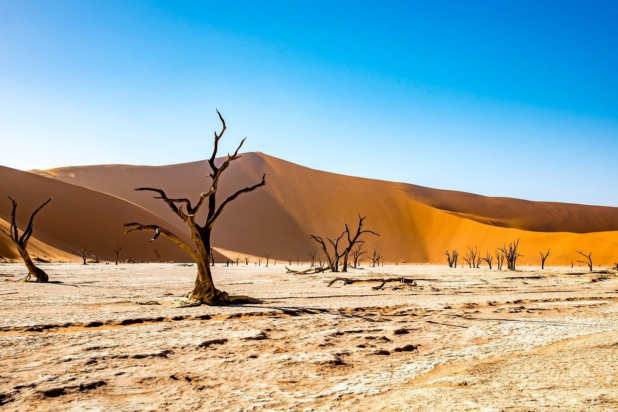 15 Days Namibia Highlights Safari 1