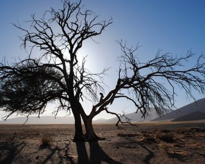Namibia Travel Guide 2