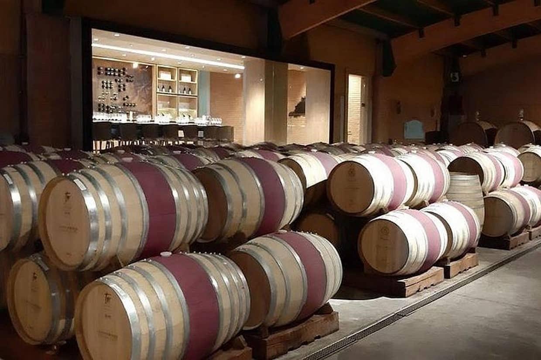 Santiago City and Concha y Toro Winery Tour 4