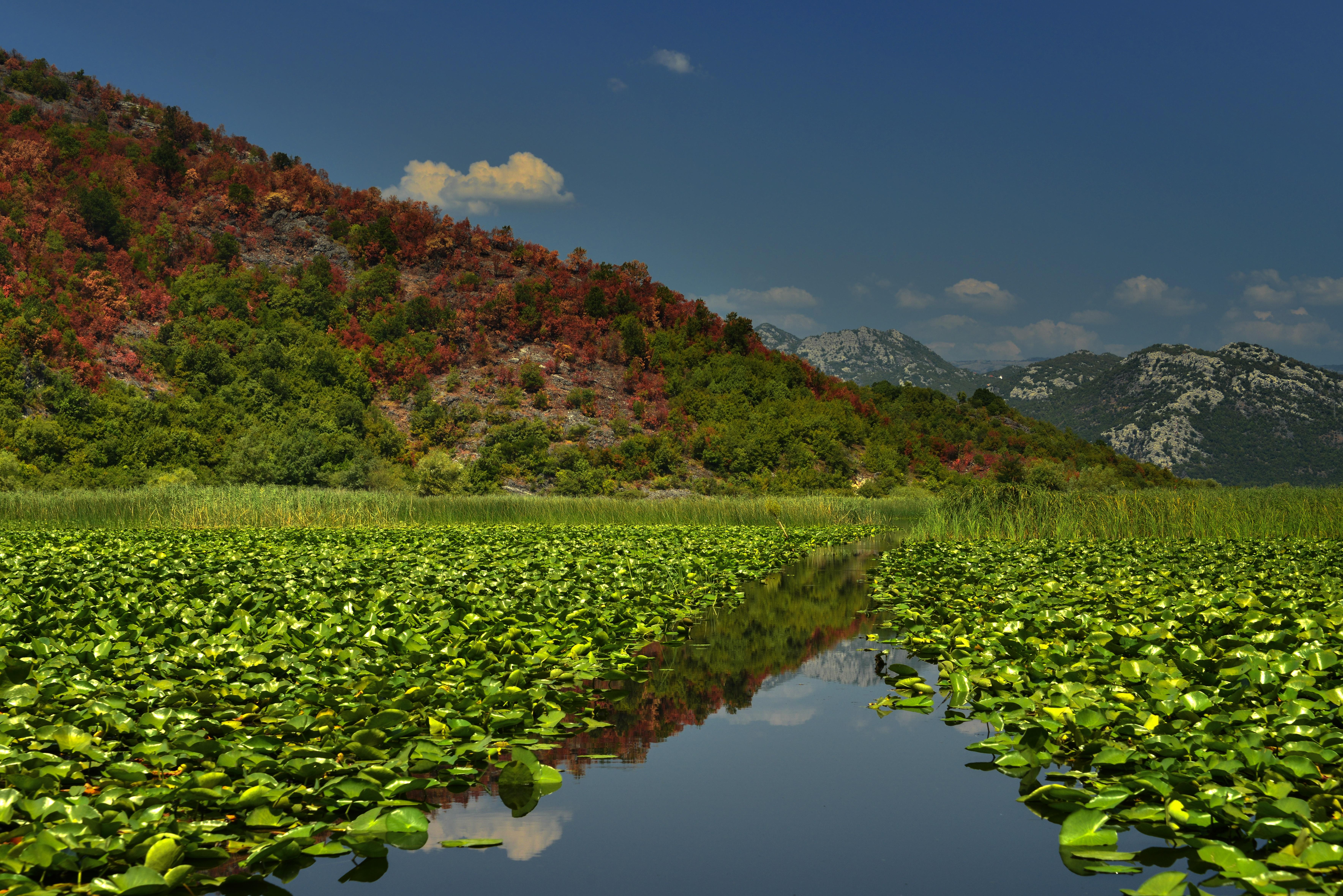 National Park Skadar Lake Tour 2