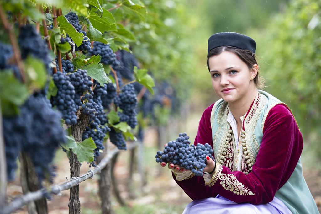 Crmnica Wine Tour 5