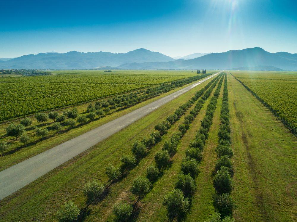Montenegro Wine Tour 1