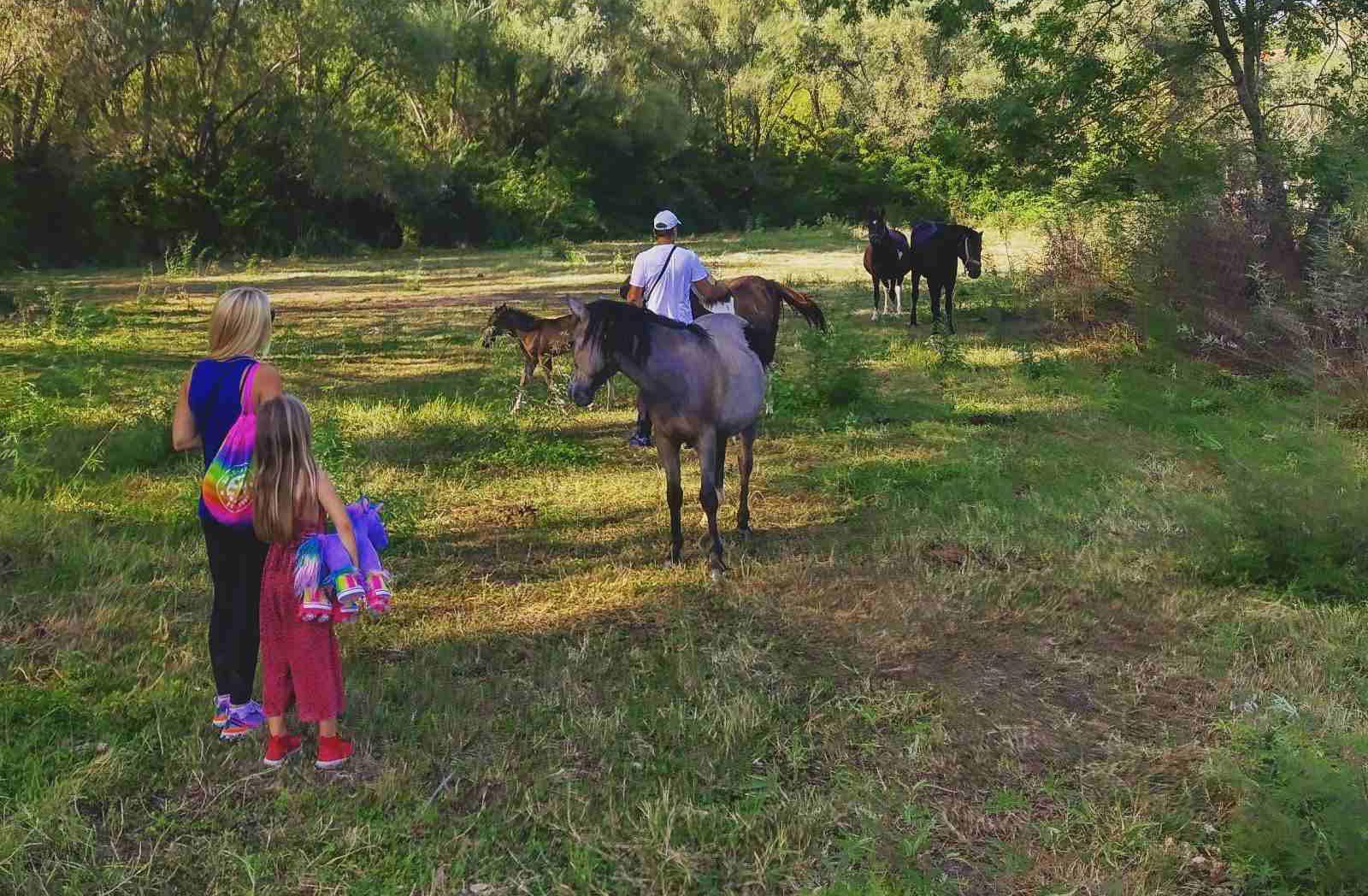 Žabljak Crnojevića Horse Riding Tour 2
