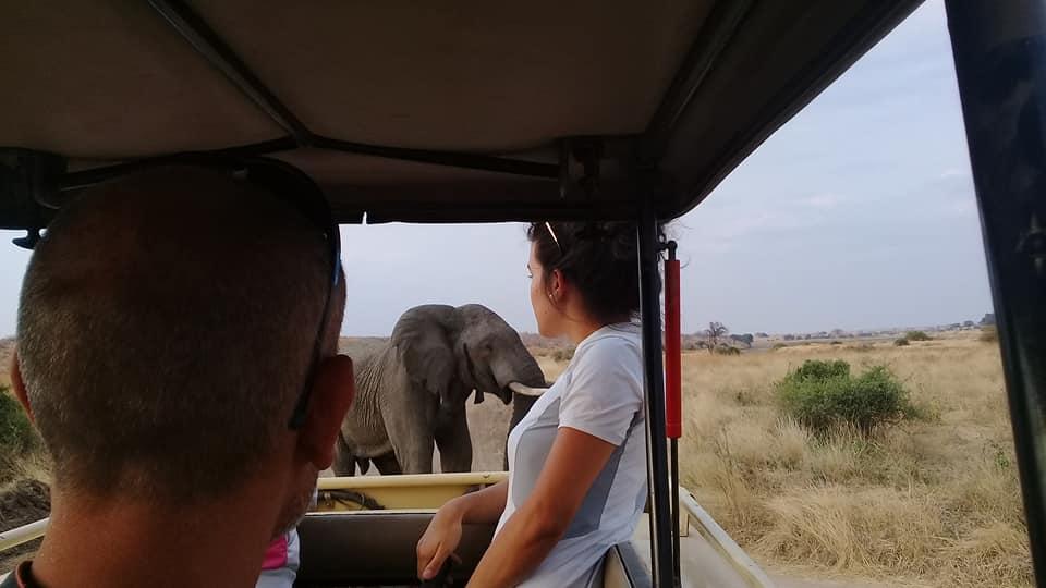 Tanzania Camping Safari To Serengeti and the Ngorongoro Crater 1