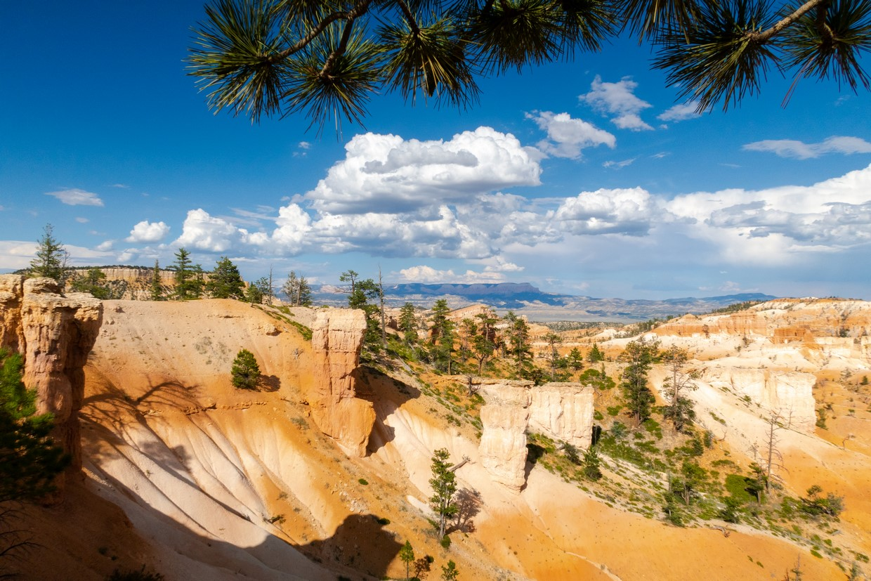 11 Day Best of the West Zion, Bryce, Antelope Canyon, Monument Valley, Grand Canyon, Death Valley, and Yosemite Tour 4