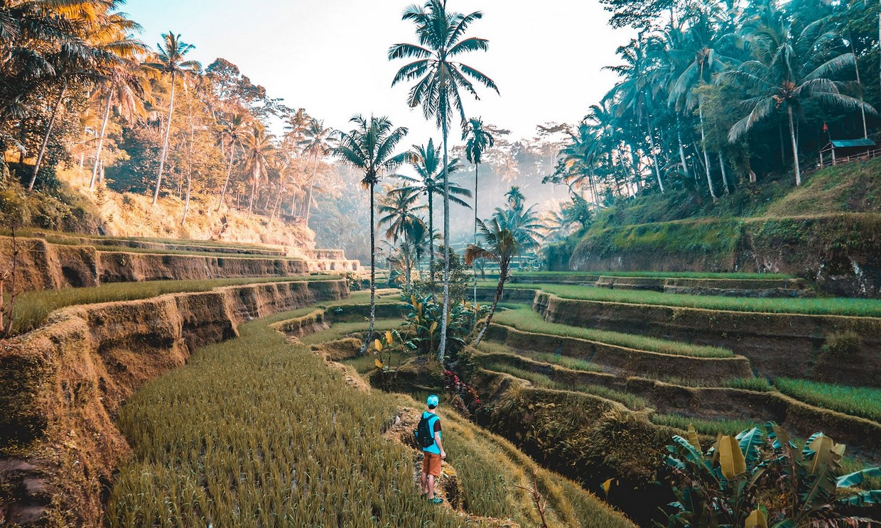 Private Tour : 4 Days Bali Tour Package 1