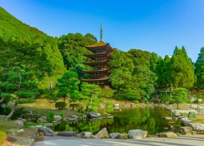 Summary from Fukuoka to Hiroshima Trip 7