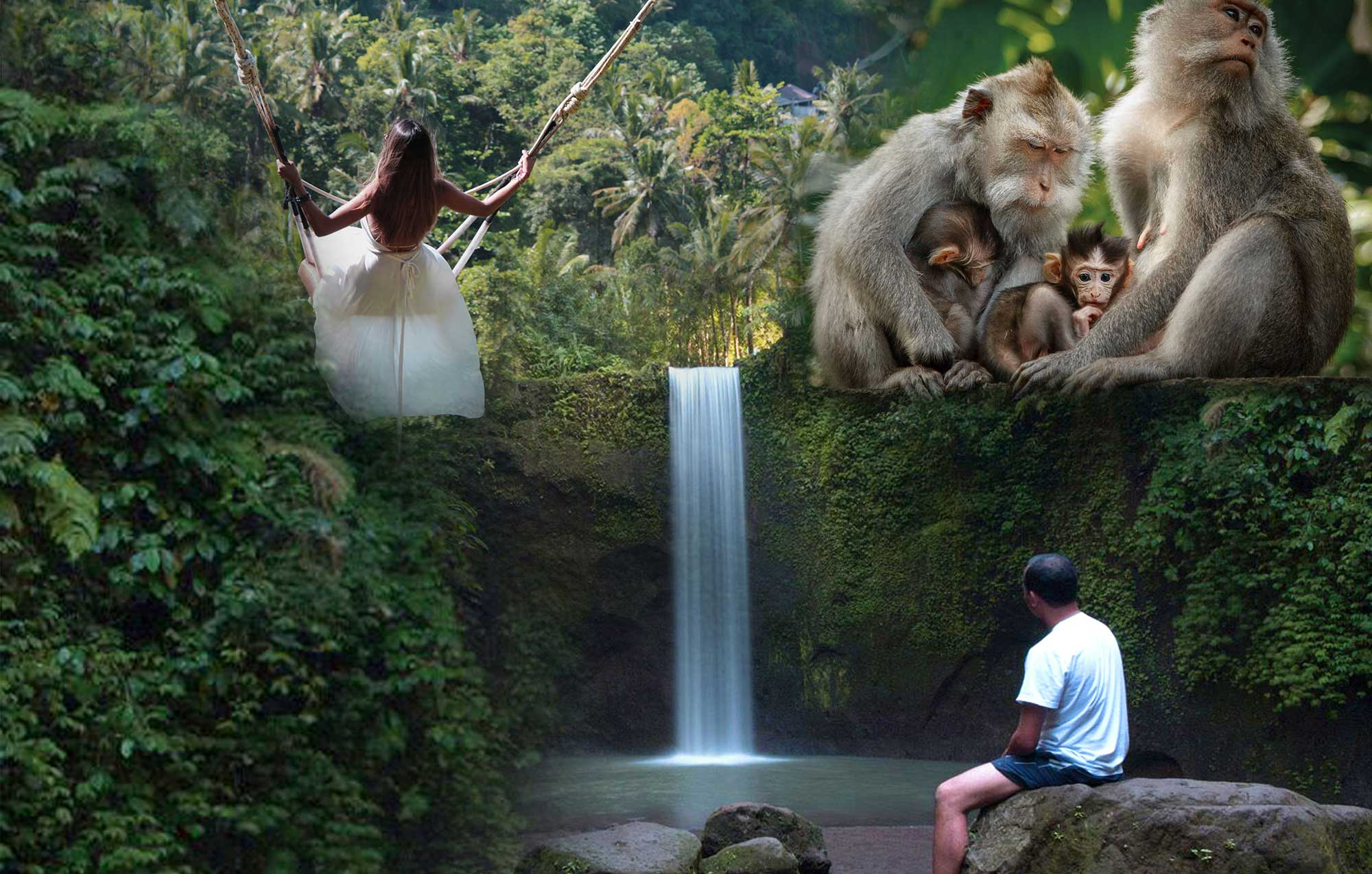 Ubud Highlights Private Tour with Swing