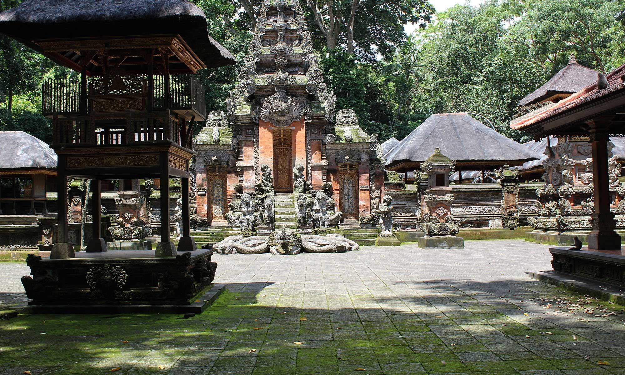 Ubud Highlights Private Tour with Swing 4