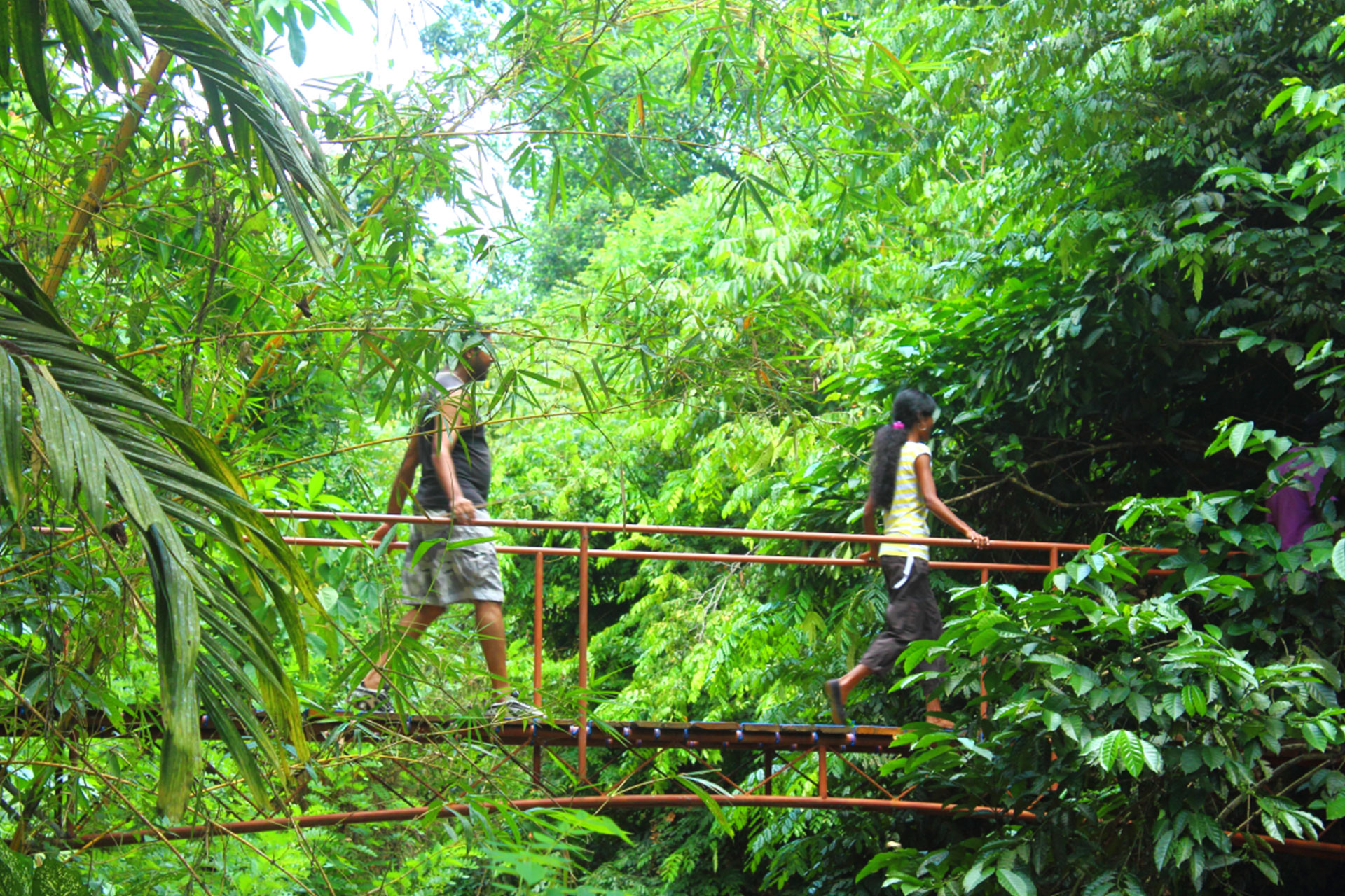 Sri Lanka Camping Tour 10