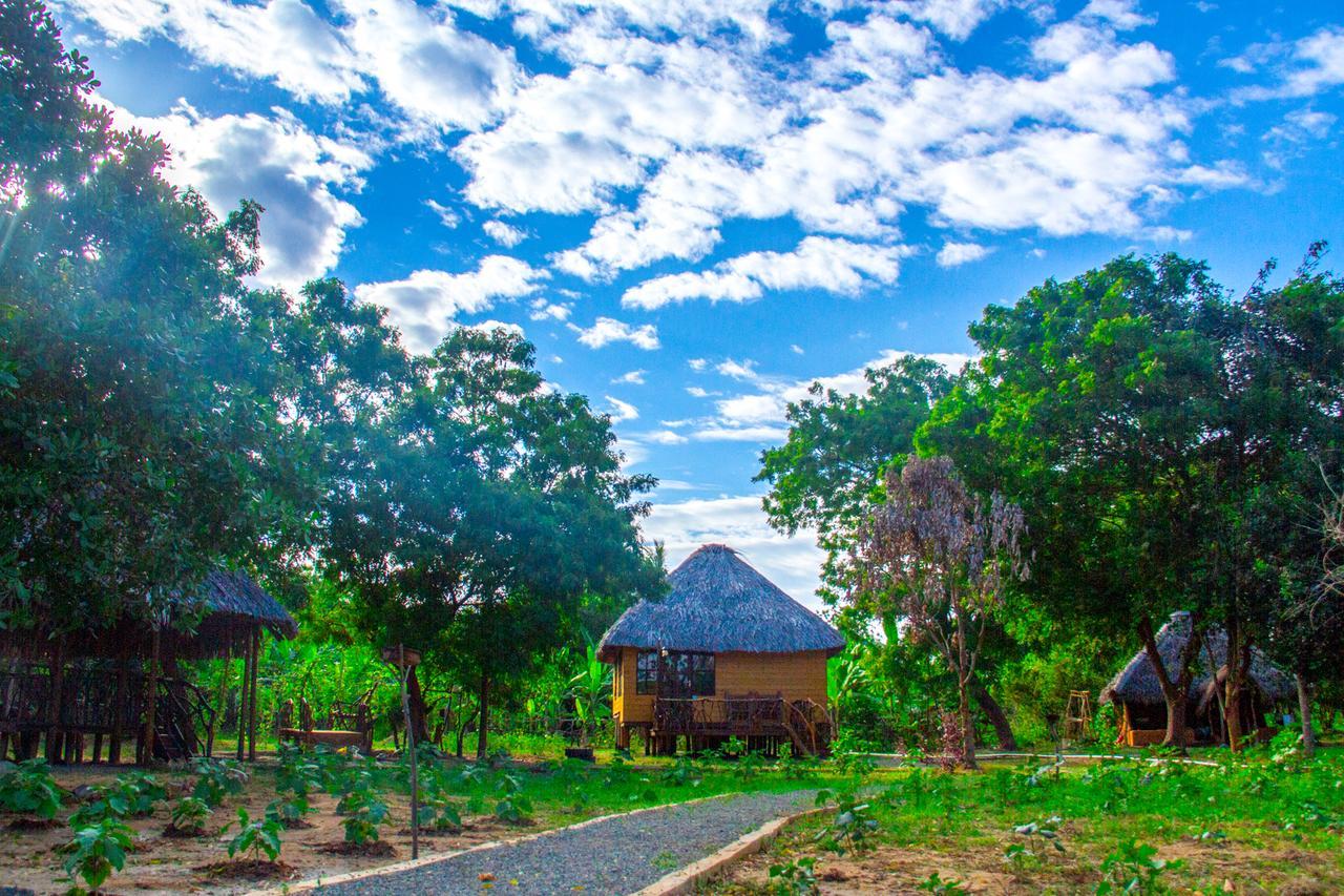 36 Day Birding Sanctuary Safari in Sri Lanka National Park 4