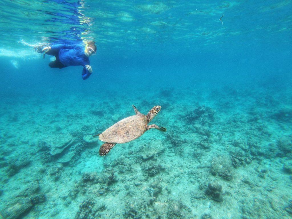 Maldives Discovery Safari Cruise Tour (All-Inclusive) 11