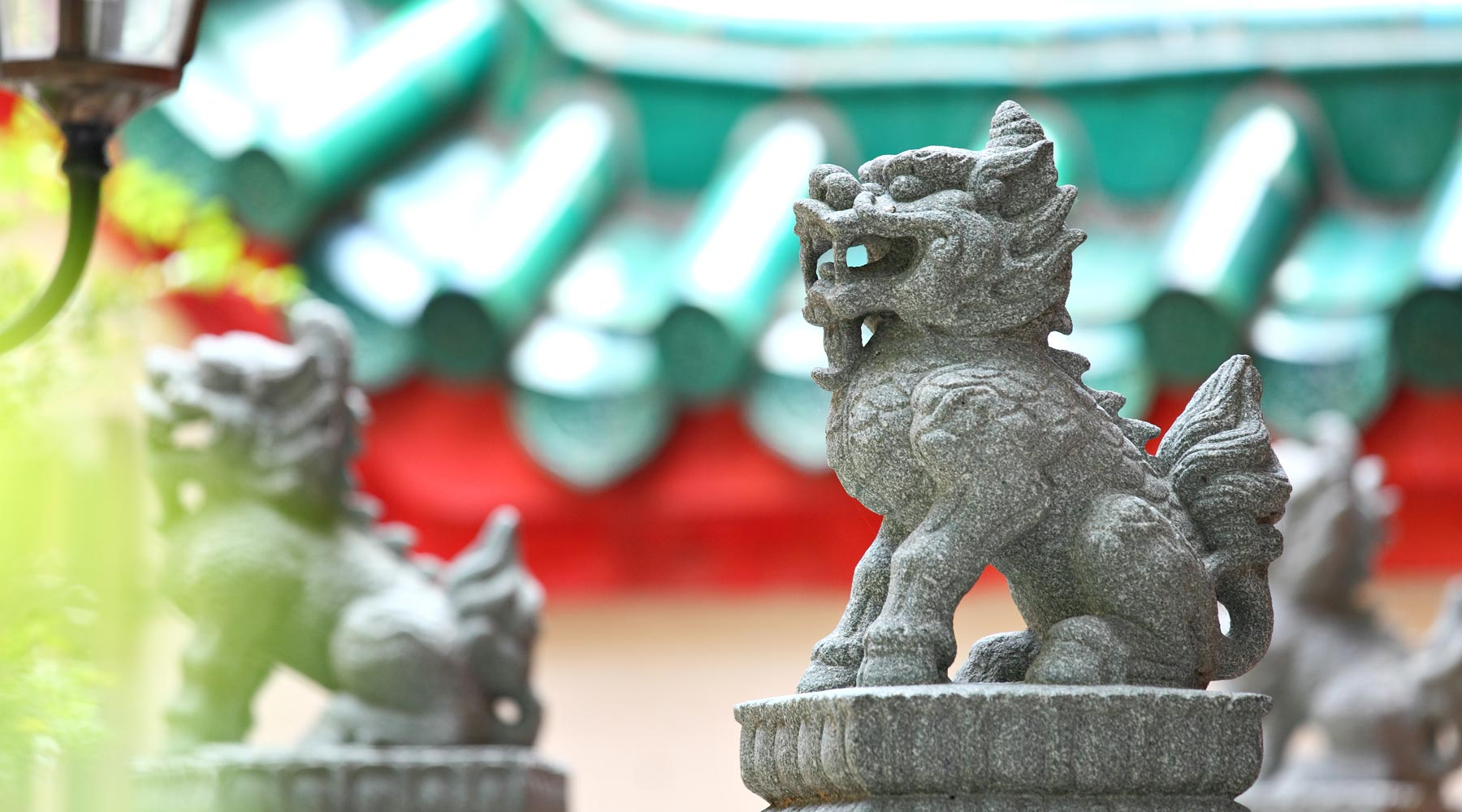 Dragon in Chinese – Types, History, Symbolism, and Legends