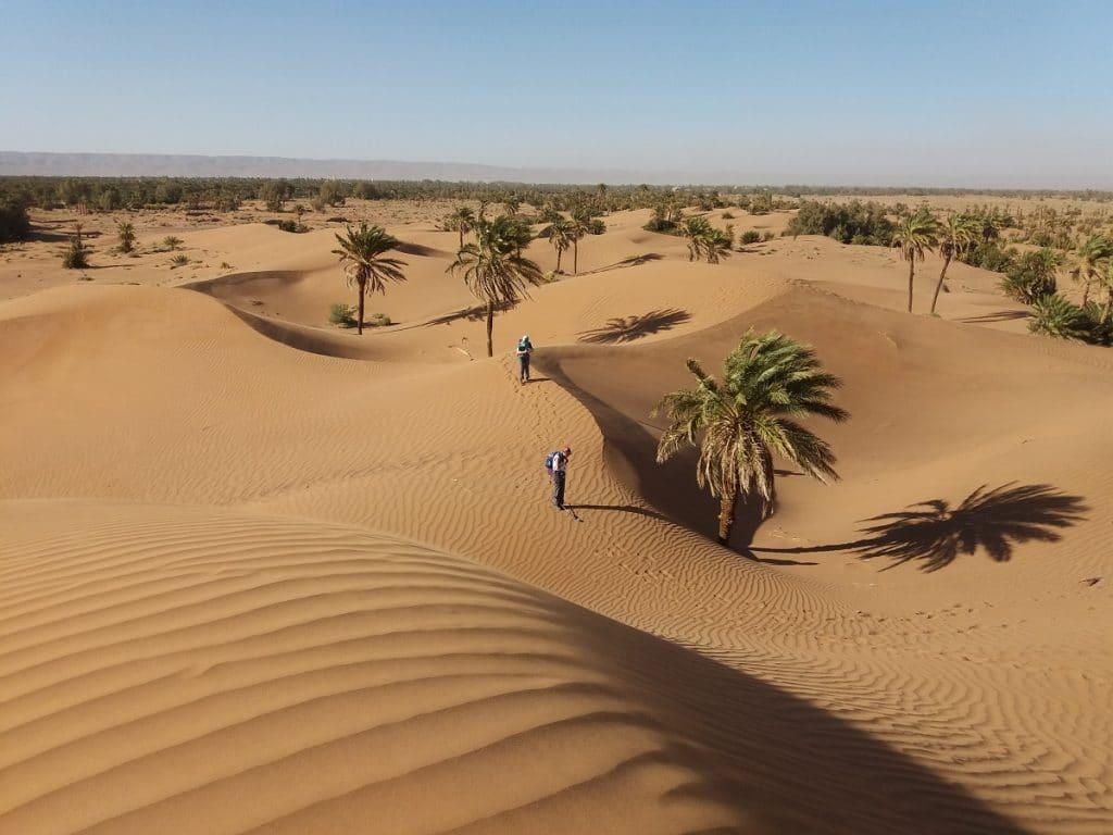 M'hamid Palms and Dunes Trekking Tour 1