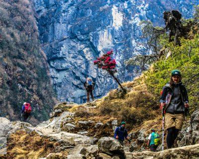 Lumbini in Nepal - The Birthplace of Buddhism 2
