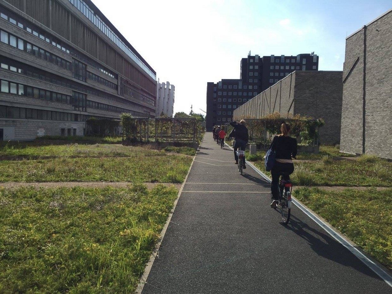 The Sustainable Copenhagen of the Future Private Bike Tour 4