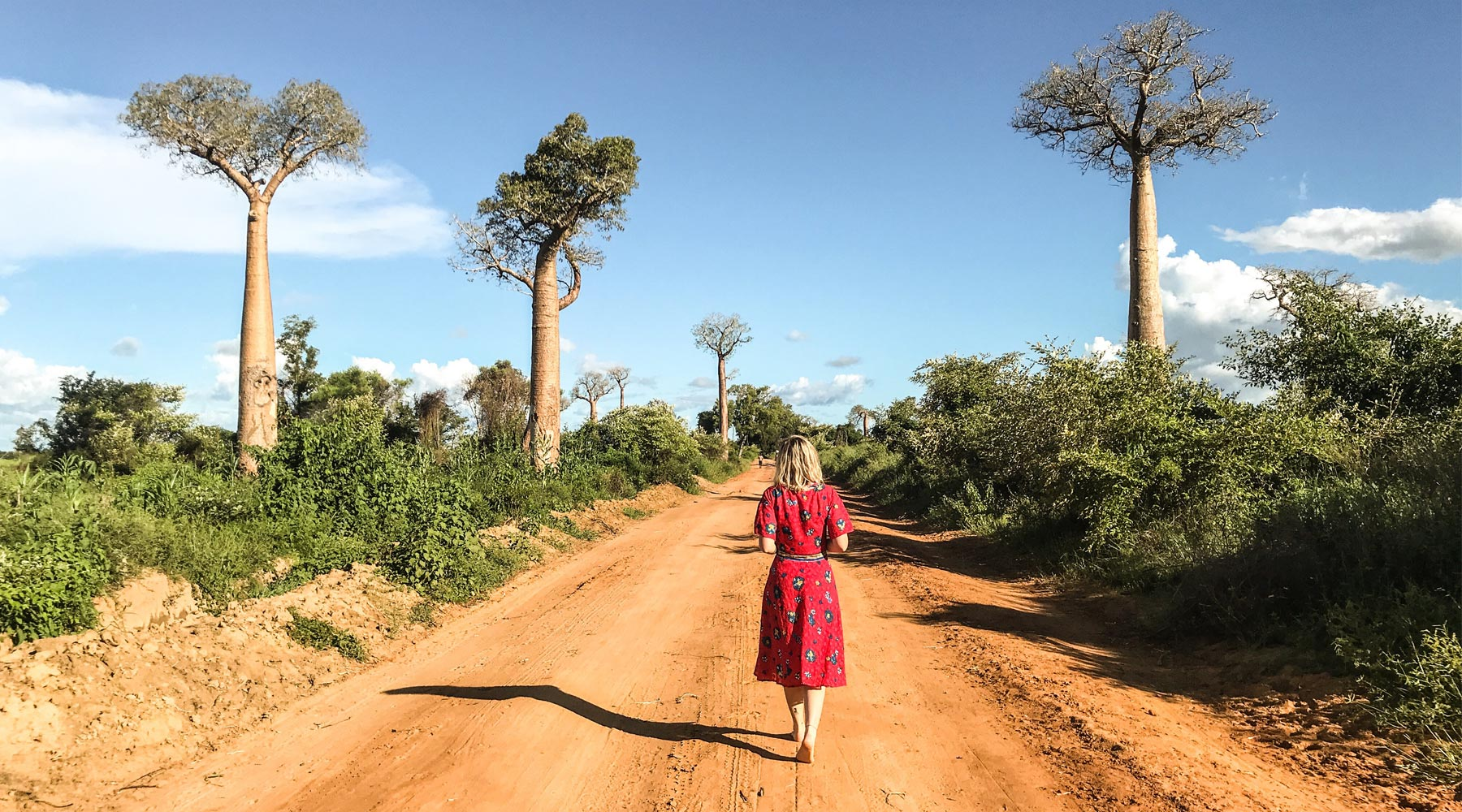 Avenue of Baobabs – The Most Beautiful Road in Madagascar