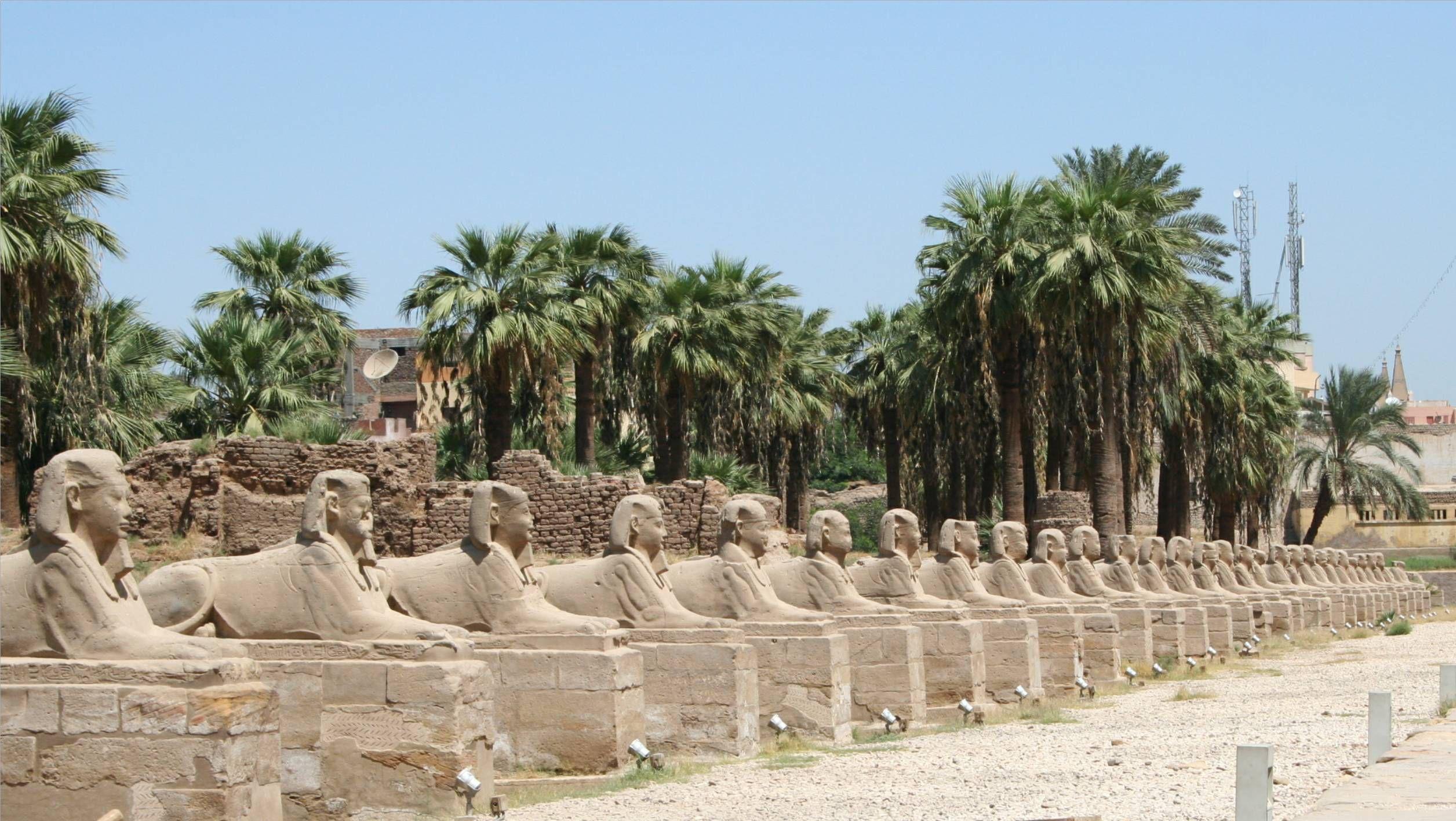 Budget Egypt Tour (luxor-Aswan-Edfu-KomOmbo 5 Star Nile Cruise) 4