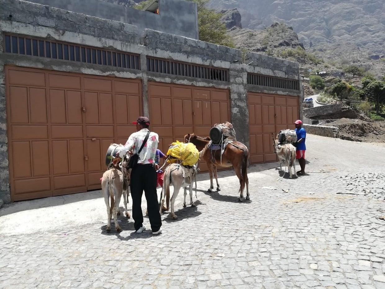 Cape Verde: Best Trails of Santiago and Fogo Islands 7