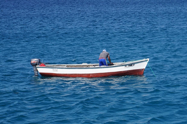 Best of Boa Vista Island: Beach & Discovery Tours 1
