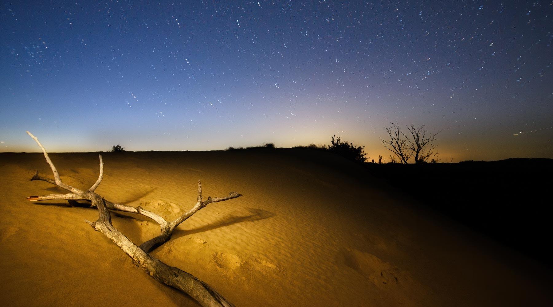 Namib Desert – The Oldest Desert in the World