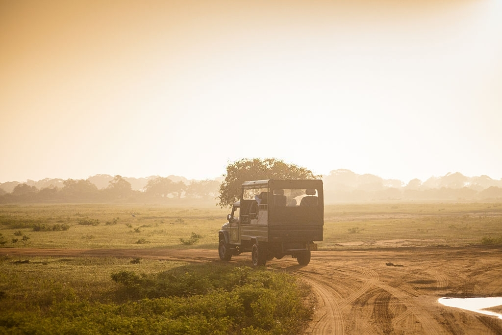Exploring Leopard's with Wild Bush Camping in Sri Lanka 5