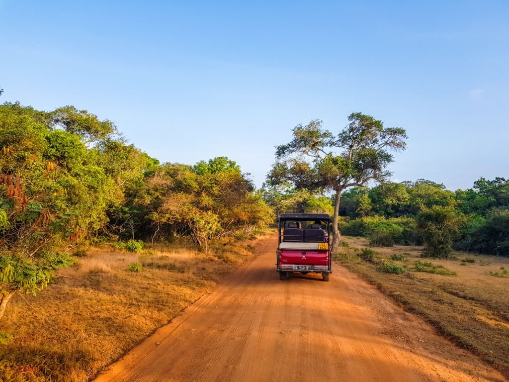 Exploring Leopard's with Wild Bush Camping in Sri Lanka 6