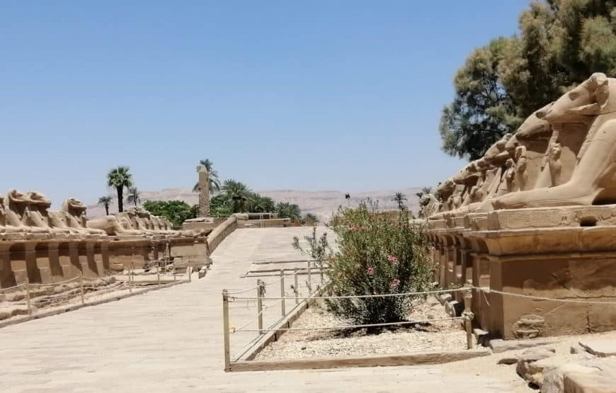 Tours To Karnak and Luxor Temple 4
