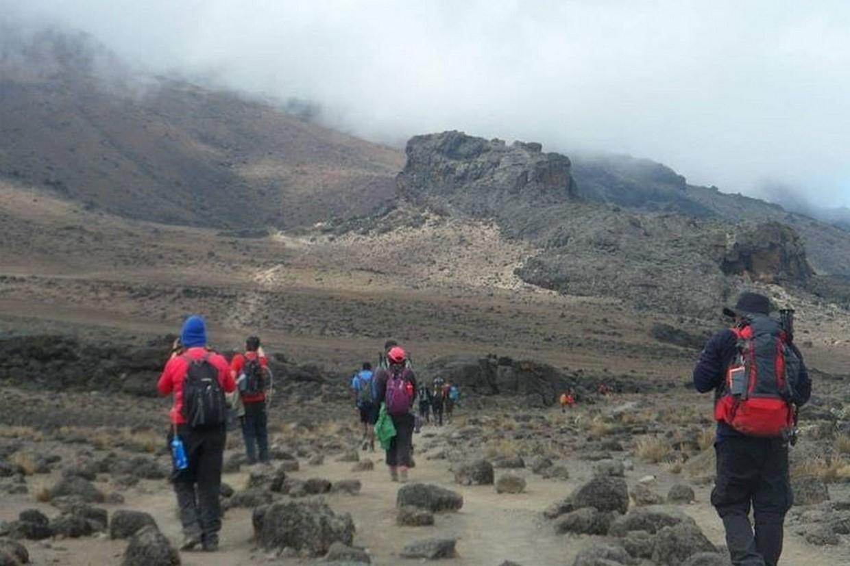 Tramping Mount Kilimanjaro Via Ubwe Route 3