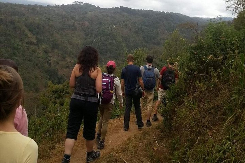 Tramping Mount Kilimanjaro Via Ubwe Route 9