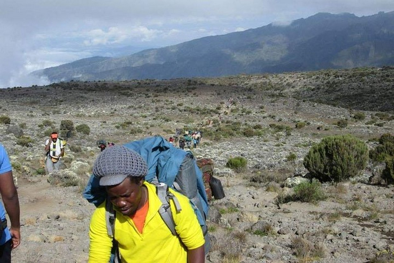 Trek Mount Kilimanjaro via Shira Route 5