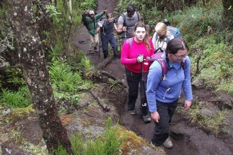 Mount Kilimanjaro Hiking Via Marangu Route 3