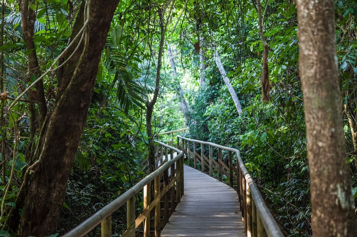 Exotic Landscapes of Costa Rica 3