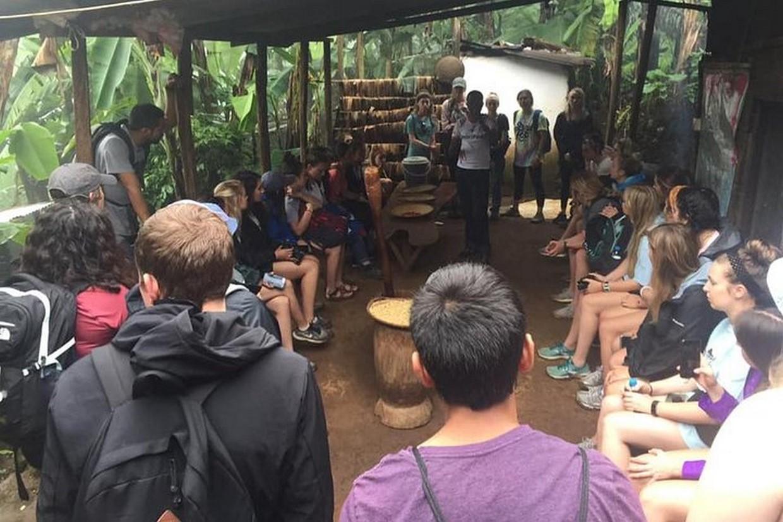 Materuni Waterfall & Coffee Tour 8