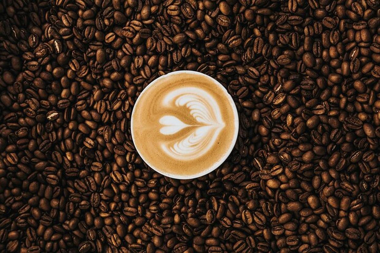 Coffee Excursion 3