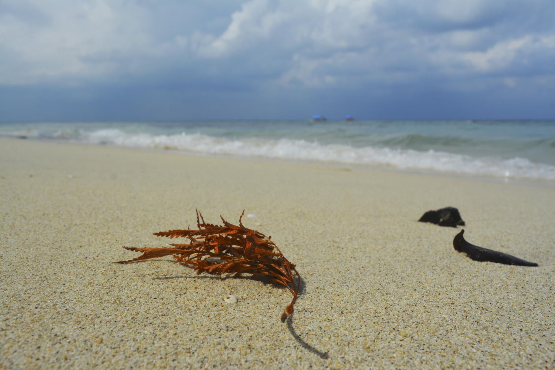 Andaman Nicobar Islands Tour Package 10