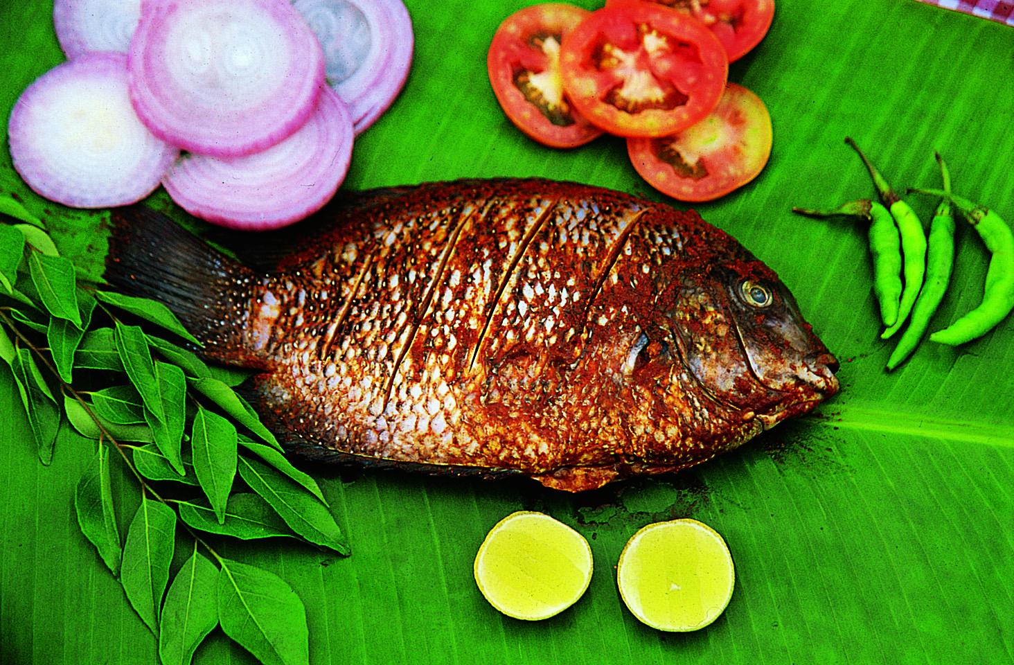 Andaman Nicobar Islands Tour Package 9