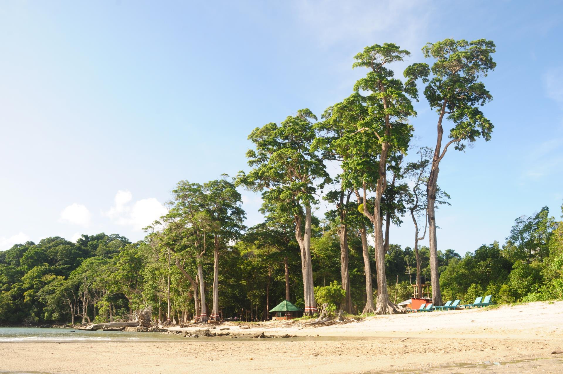 Andaman Nicobar Islands Tour Package 8