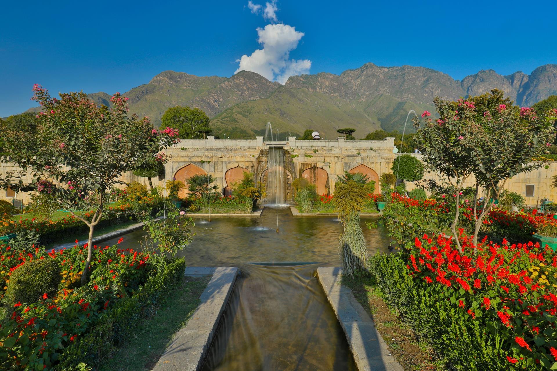 Kashmir & Ladakh 8