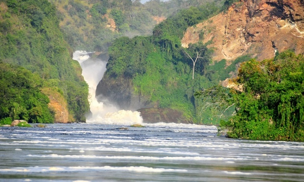 12-Day Uganda Gorillas, Chimps and Wildlife Safari 5