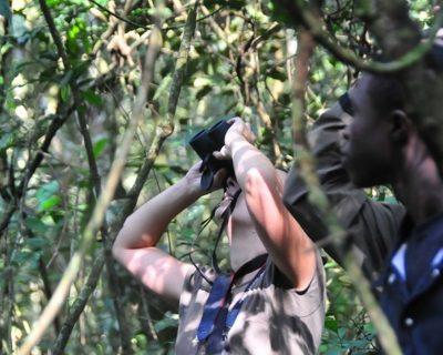 Uganda Travel Guide 5