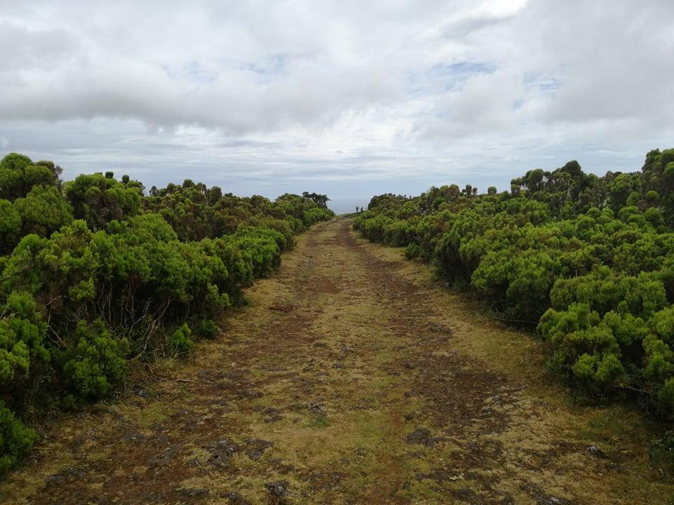 Terceira Island Hiking Tour 4