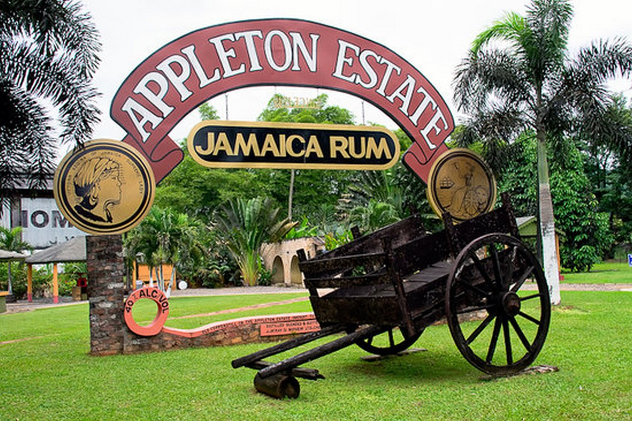 Appleton Estate Rum Factory Experience 1