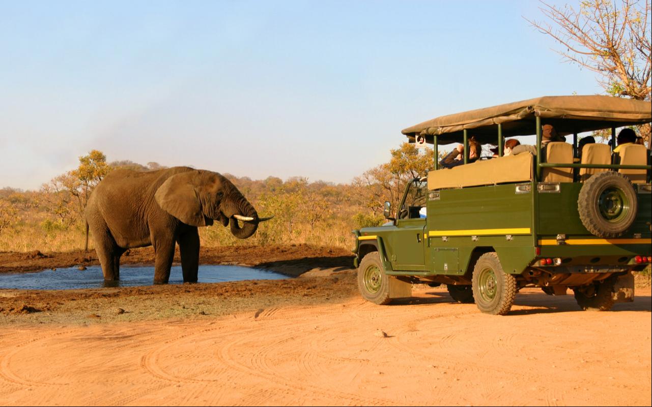 3 Days Kidepo Valley Wildlife Adventure 2