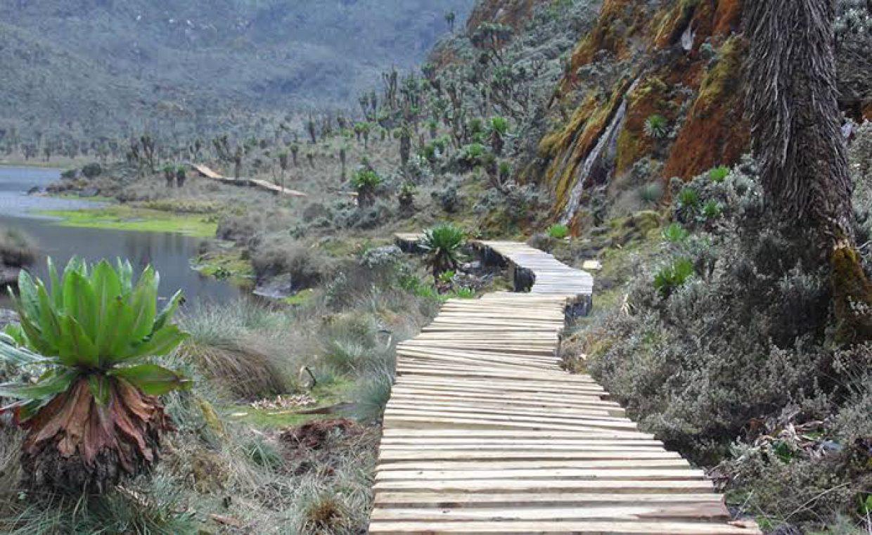 9 Days Rwenzori Mountain Climbing Trip in Uganda 2